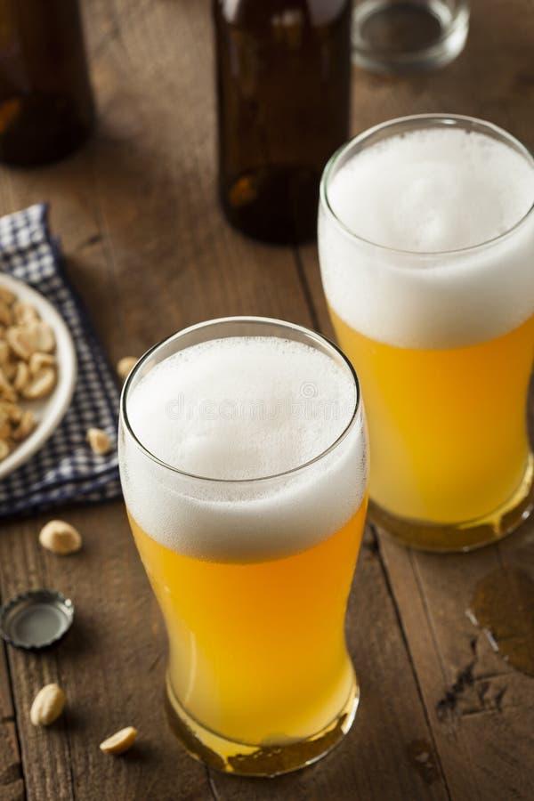 Resfreshing Lager Beer dorato fotografia stock