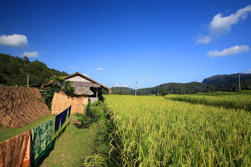 Download Resident Village Near Terraced Rice Field Stock Image - Image: 27285837