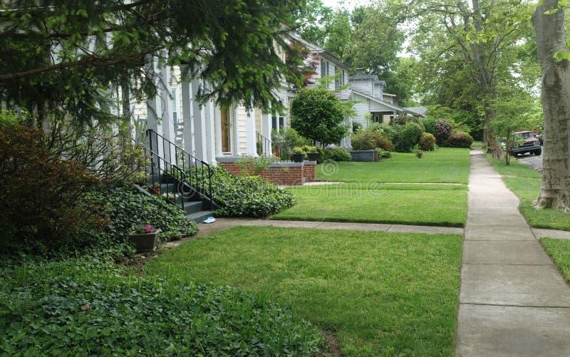 Residential Neighborhood Block in Summer stock photo
