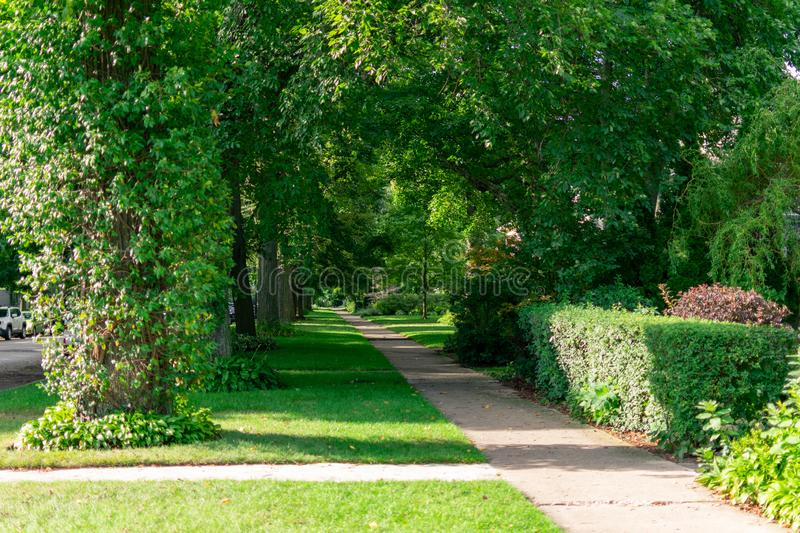 Residential Shaded Sidewalk with Green Trees in Evanston Illinois. A residential shaded sidewalk with patches of sunlight near homes in Evanston Illinois with royalty free stock photos