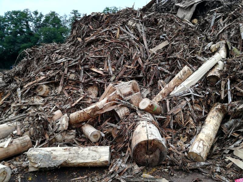 Residuo della lavorazione del legno per la scheggia immagini stock