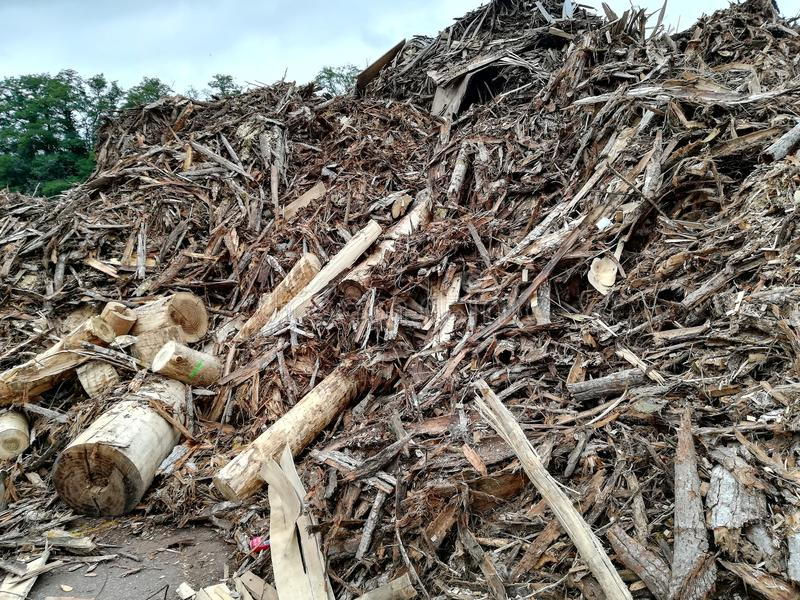 Residuo della lavorazione del legno per la scheggia fotografia stock libera da diritti