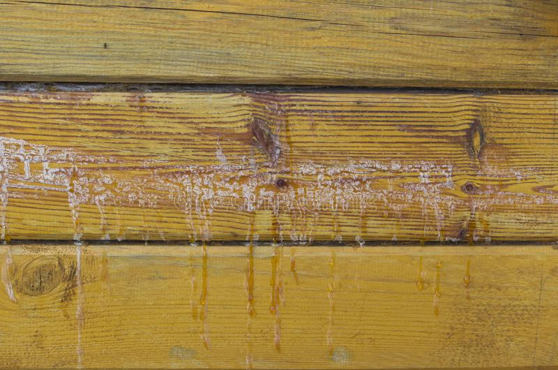 Resin wood. The background is made of logs of larch wood stands resin stock photos