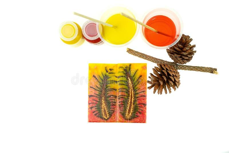 Resina de epóxido del pino del cono del color de lanzamiento del híbrido y de la mezcla en taza plástica foto de archivo libre de regalías