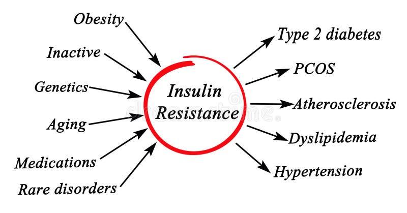 Resistência à insulina ilustração stock