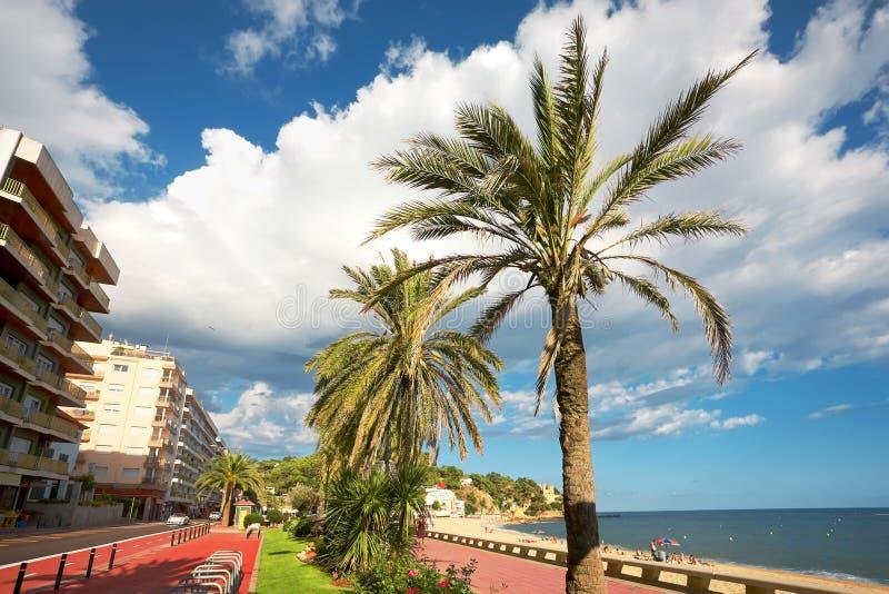 Download Resort stock image. Image of climate, brava, lloret, cloud - 18319535