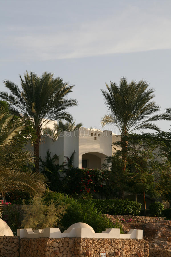 Resort bungalow and palms. Egypt royalty free stock photos
