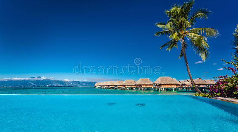 Resort with infinity swimming pool and the beach, Moorea Island, Tahiti royalty free stock photo