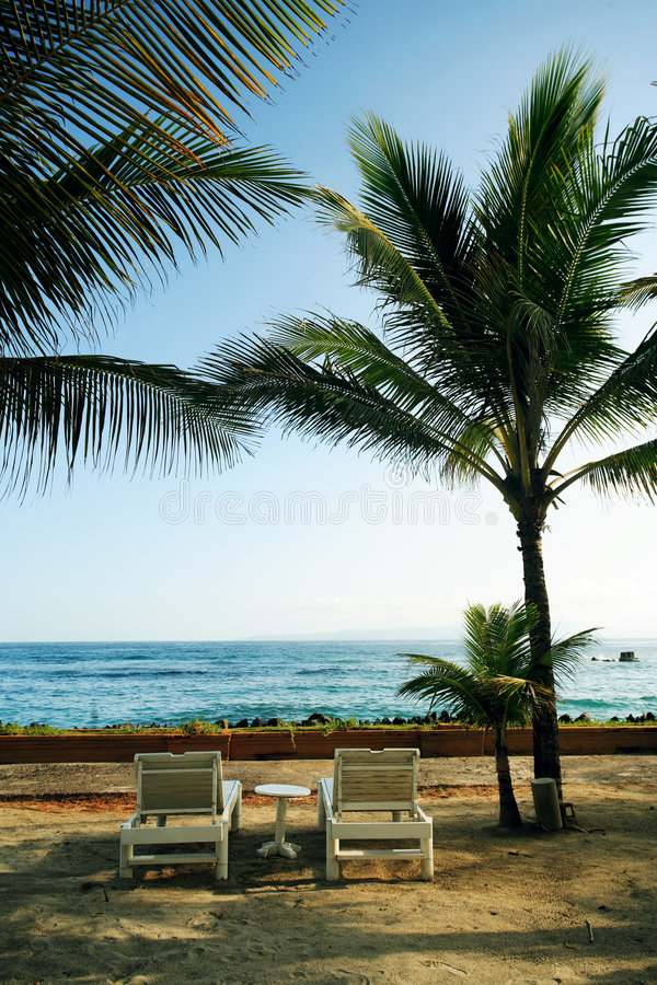 Resort lounge chairs stock images