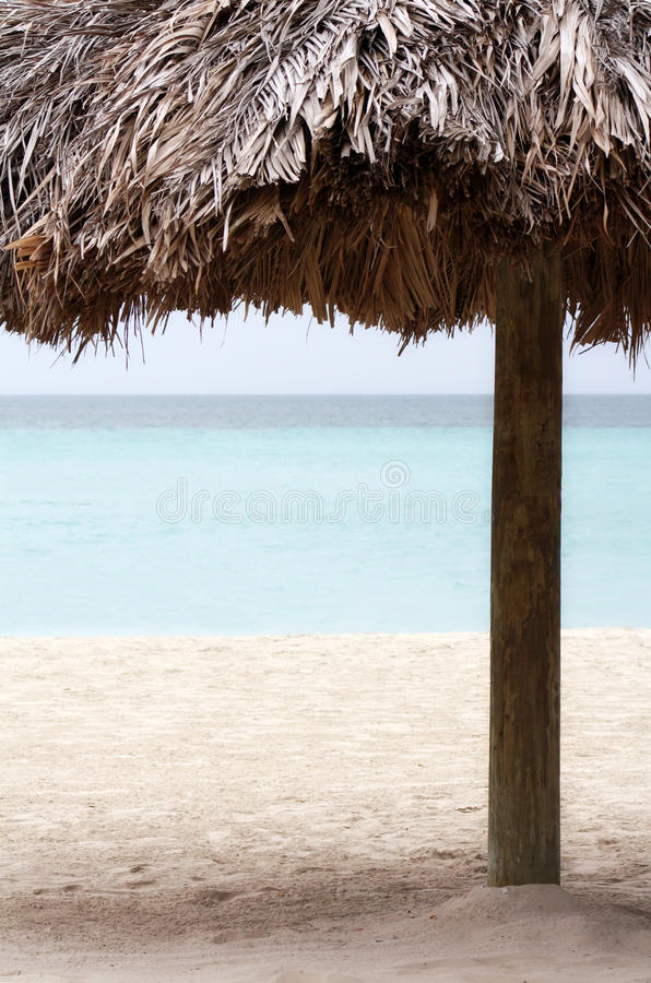 Download Resort Palm Tree On The Beach Stock Image - Image: 27791305