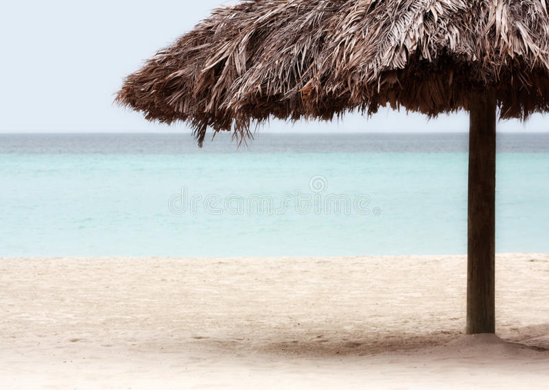 Download Resort Palm Tree On The Beach Stock Image - Image of traveling, landscape: 27791367