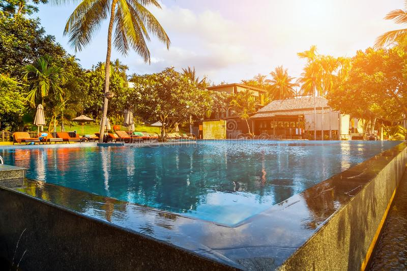 Resort Pool with Palm Trees Lounge Chairs royalty free stock image