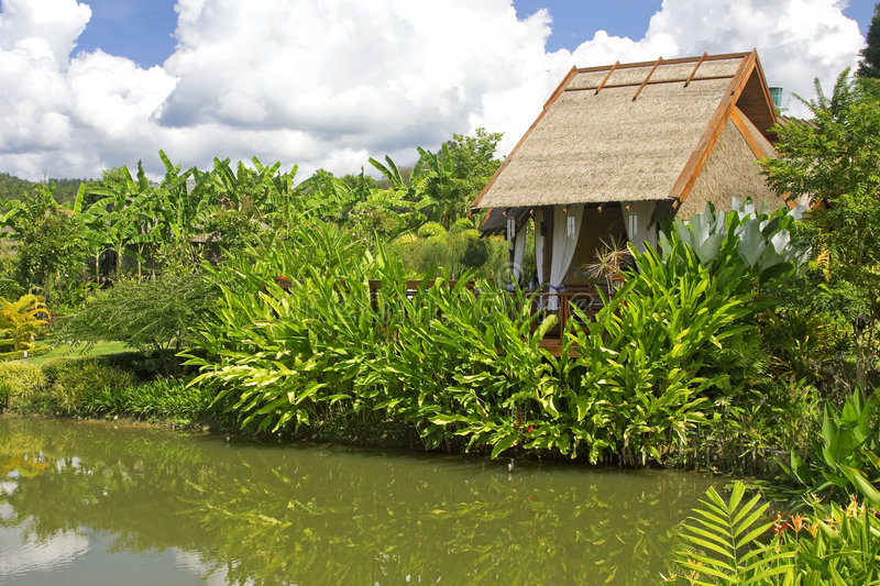Download Resort in the tropics stock image. Image of pond, water - 7074821