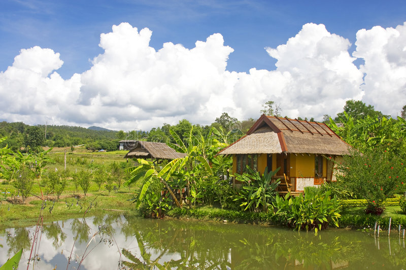 Download Resort in the tropics stock photo. Image of peaceful, hotel - 7074966