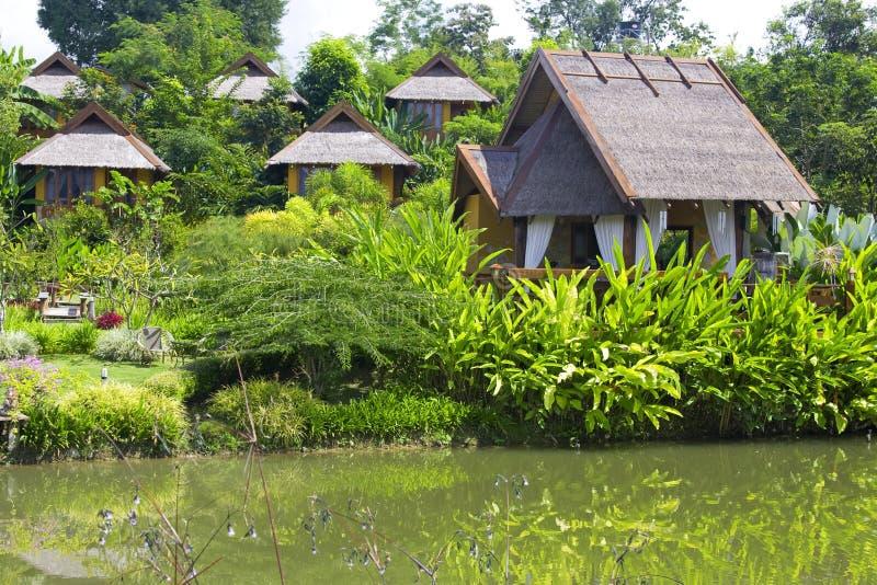 Download Resort in the tropics stock photo. Image of peaceful, resort - 7074996