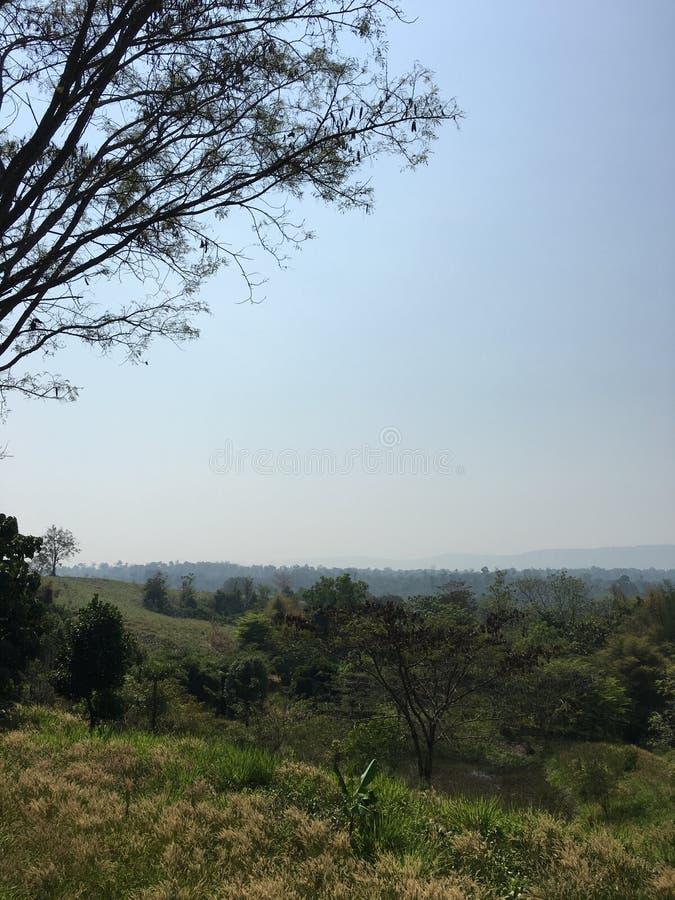 Greenway Forest View 012. Resort wang nam khiao korat royalty free stock photos