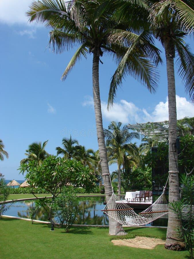 resort5 sanya стоковое изображение rf