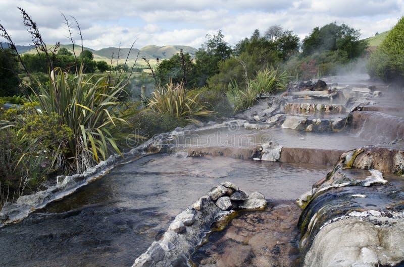 Resorte caliente de Nueva Zelandia y piscina del balneario en Rotorua fotos de archivo libres de regalías