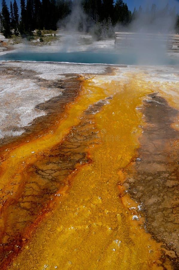 Resorte caliente de Yellowstone fotos de archivo libres de regalías