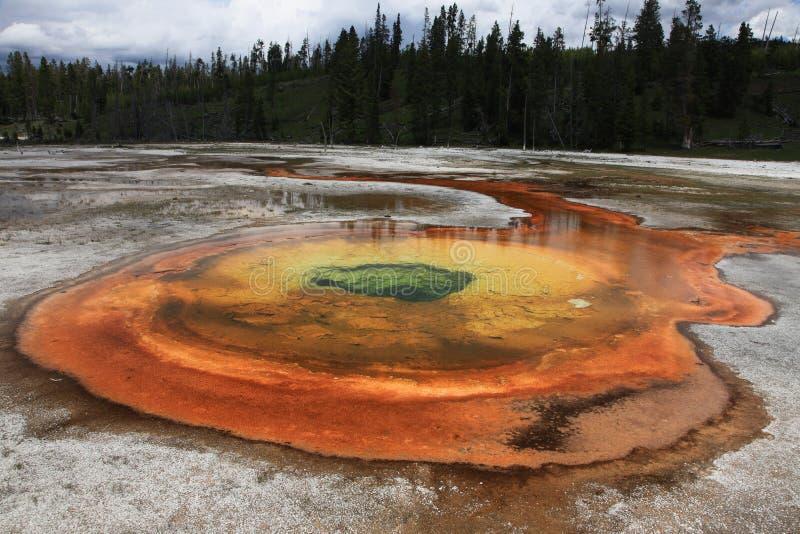 Resorte cromático. Parque nacional de Yellowstone foto de archivo