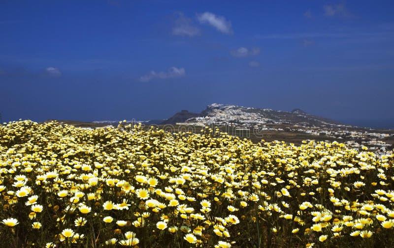 Resorte de Santorini fotografía de archivo