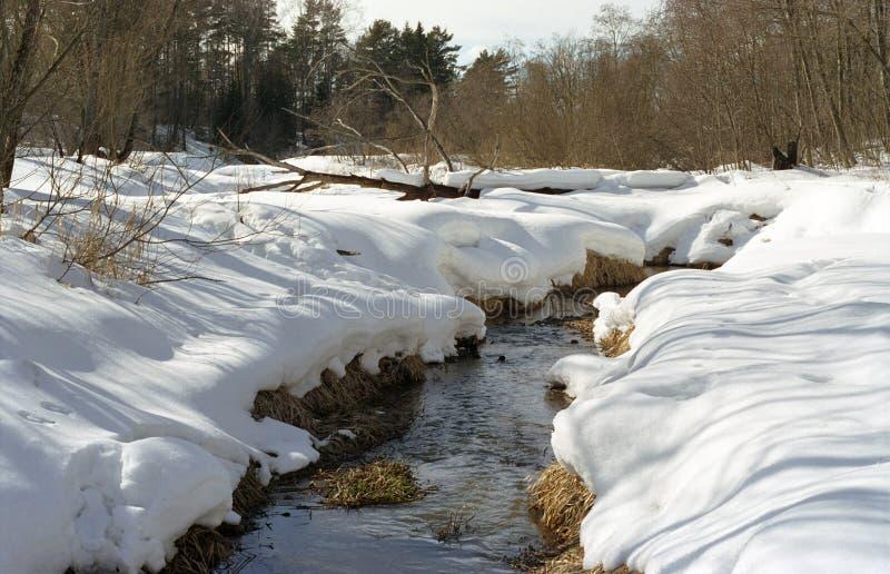 Resorte. pequeño río imagenes de archivo