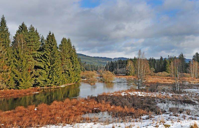 Resorte temprano - río de la montaña imagenes de archivo