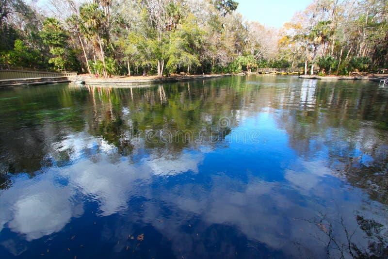 Resortes de Wekiwa en la Florida foto de archivo