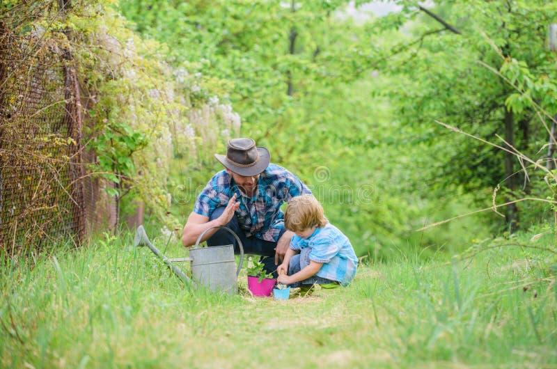 Respect de l'?cologie petit p?re d'aide d'enfant de gar?on dans l'agriculture Ferme d'Eco p?re et fils dans le chapeau de cowboy  photographie stock libre de droits
