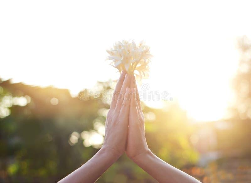 Respektera och be med blomman på naturbakgrund royaltyfri foto