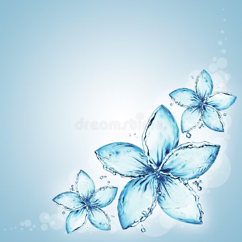 respingo da água, flores ilustração stock