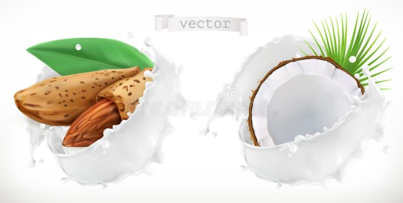Respingo da amêndoa, do coco e do leite vetor 3d ilustração do vetor