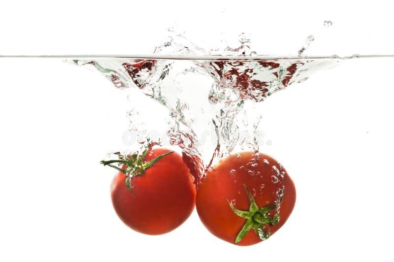 Respingo de naufrágio do tomate foto de stock royalty free