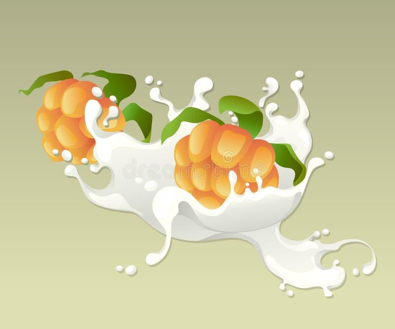 Respingo do leite com cloudberries. ilustração stock