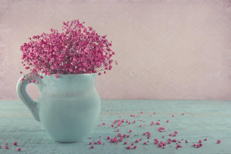 A respiração do bebê cor-de-rosa floresce em um jarro azul foto de stock royalty free