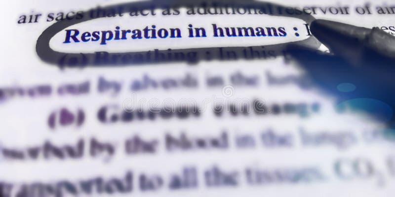 respiración en humanos tema biológico mostrado sobre fondo abstracto foto de archivo libre de regalías
