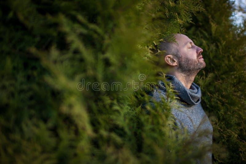 Respire el aire fresco en naturaleza imagen de archivo