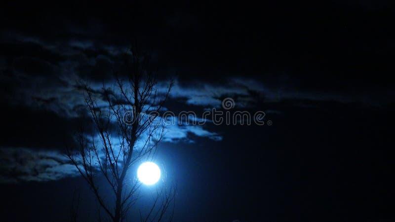 Resplandor del claro de luna imagenes de archivo