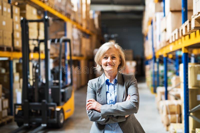 Responsabile del magazzino della donna o supervisore senior, armi attraversate fotografia stock libera da diritti