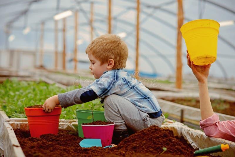 Responsabilidade social empresarial Conceito da responsabilidade social empresarial responsabilidade social empresarial no ambien fotos de stock royalty free