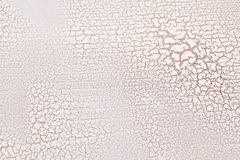 Resquebrajadura superficial de madera blanca. fotos de archivo