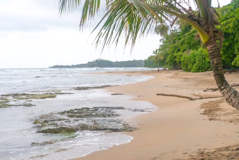 Ressac étonnant de plage de Costa Rica Ocean Water Beach Paradise de vacances d'arbres de pluie de l'eau des Caraïbes de Forest B images stock