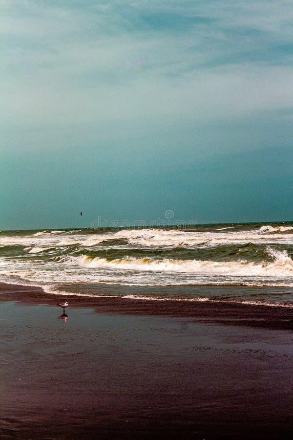 Ressac d'océan dans la couleur hyper photographie stock libre de droits