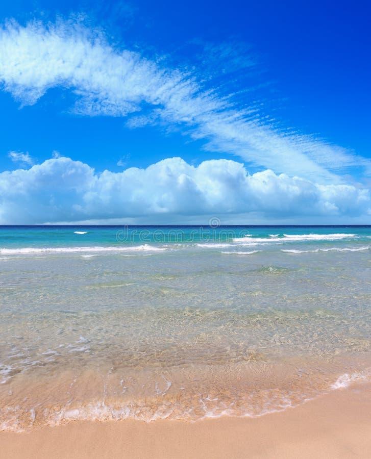 Ressac de mer sur la plage photos stock
