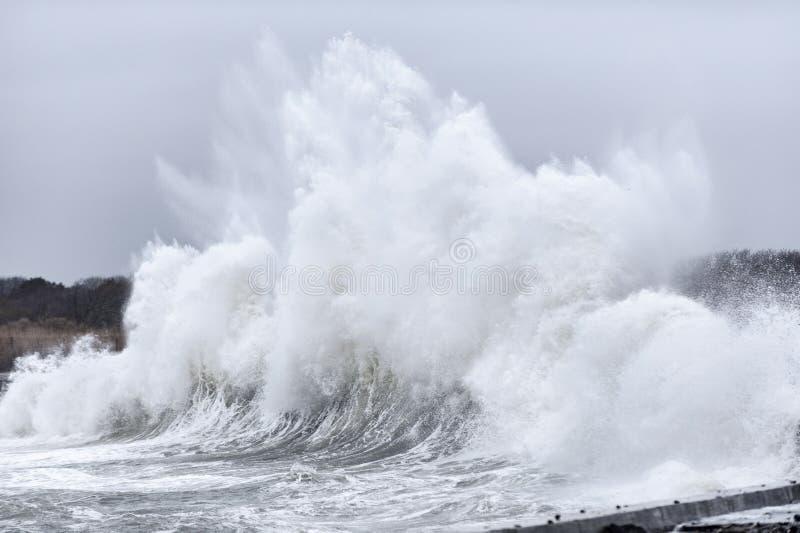 Ressaca da tempestade ao longo da movimentação do oceano imagens de stock royalty free