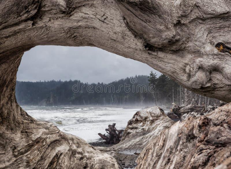 Ressaca do oceano através da janela da madeira lançada à costa imagens de stock royalty free