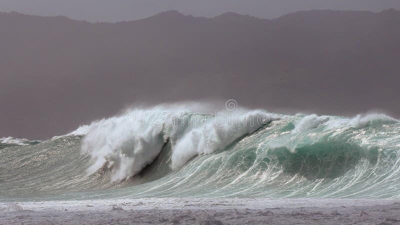 Ressaca maciça da tempestade da baía de Waimea fotos de stock royalty free