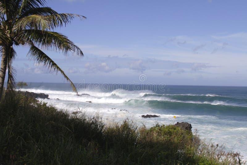 Ressaca, Seascape de Northshore fotos de stock