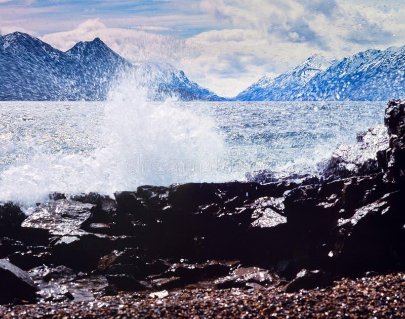 Ressaca Yukon Canadá da costa da rocha do cenário de Bennett do lago fotografia de stock royalty free