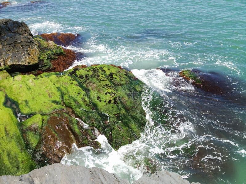 Ressacs lumineux de turquoise sur Cliff Rocks en Nouvelle Angleterre photographie stock